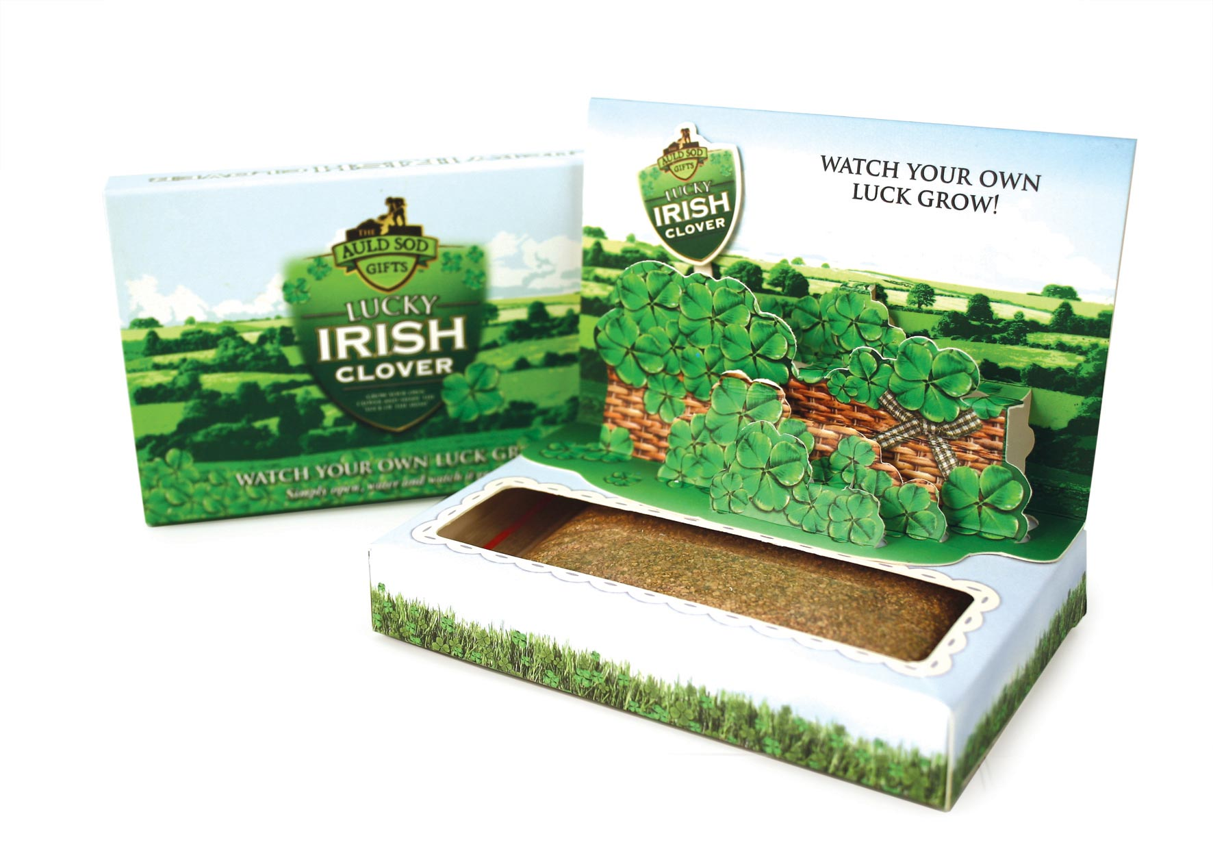 Grow Your Own Clover In A Pop Up Box