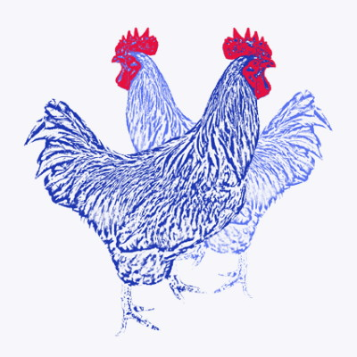 Blue Chickens Greeting Card