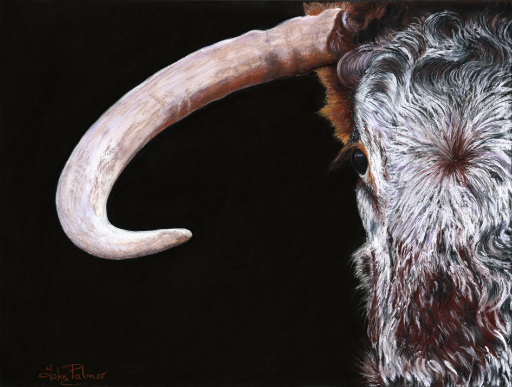 English Longhorn Greeting Card