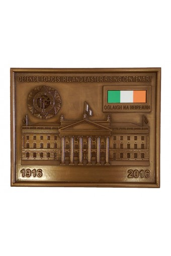 Defence Forces Ireland Bronze Plaque 14cm