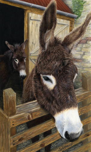 Mandy and Domino Donkeys Greeting Card
