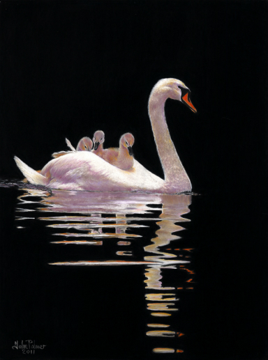 The Swan and Brood Greeting Card